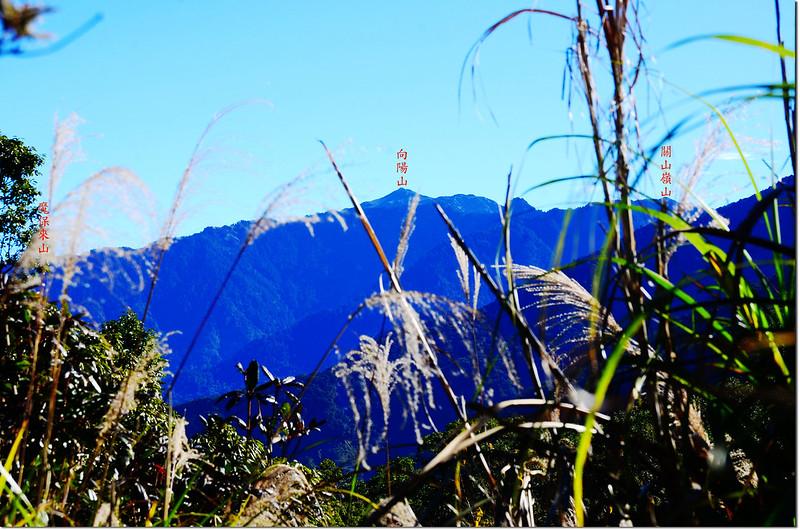 馬馬宇頓山山頂東眺向陽山、關山嶺山