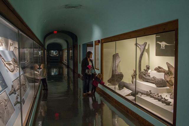 Hall of Wonders