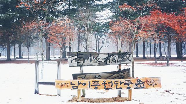 Nami Island Korea (南怡岛)