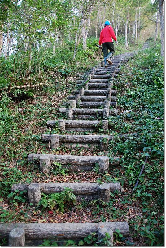 枕頭山步道 2