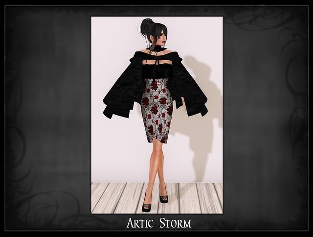 articstorm2