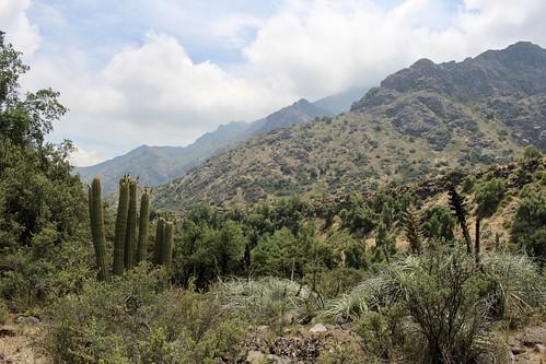 Cerro Aguas de Ramón