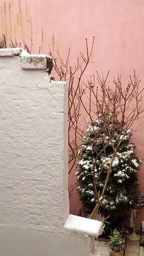 snow 7 jan 2017