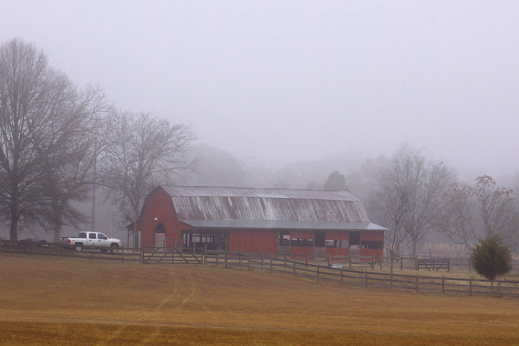 Foggy Barn 2