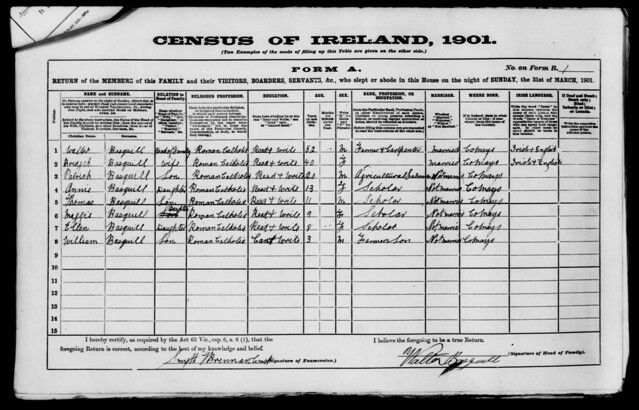 1901 Ireland Census Form A