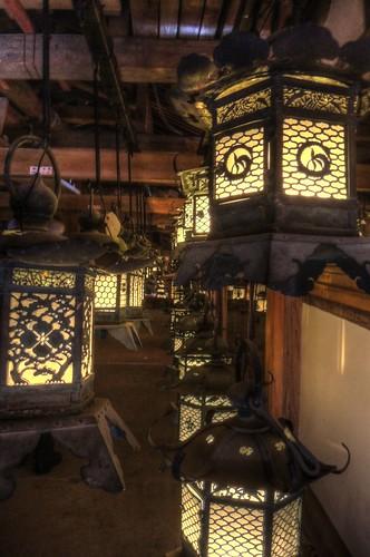 Kasuga Taisya Shrine on NOV 30, 2016 vol02 (20)