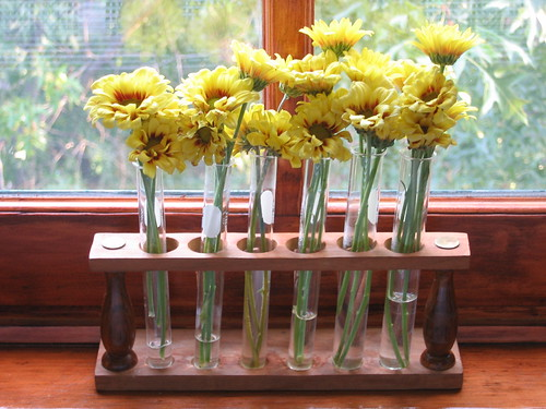 test tube flowers | by casers jean
