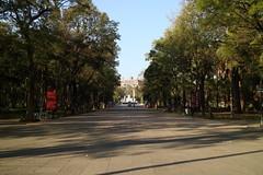 Mexico City 051