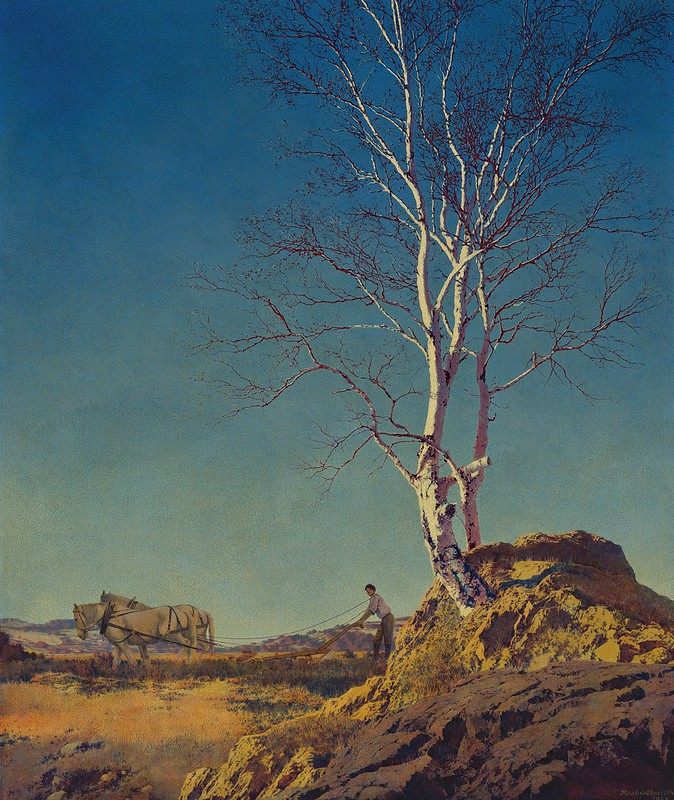 Maxfield Parrish - White birch