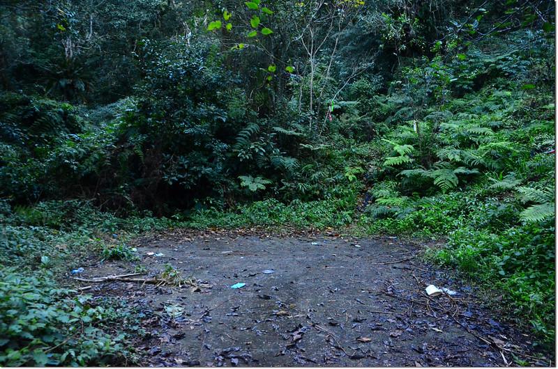 馬馬宇頓山徑登山口