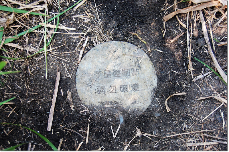 丈八斗內政部二等衛星控制點(# M911 Elev. 24 m) 1