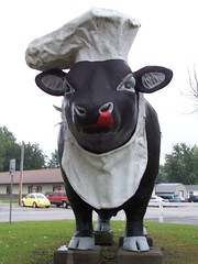 Chef cow | by Valerie Everett