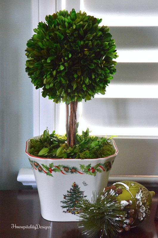 Preserved Boxwood Topiary-Housepitality Designs