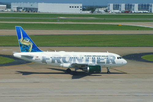 un-named Green Sea Turtle | Frontier Airlines animal tail ...