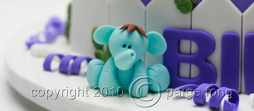 Evan's Cake - Elephant | by Paige Fong