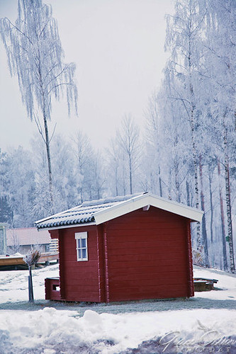 White Planet: Sweden | by Grace Olsson Fotograf(I´m abroad)