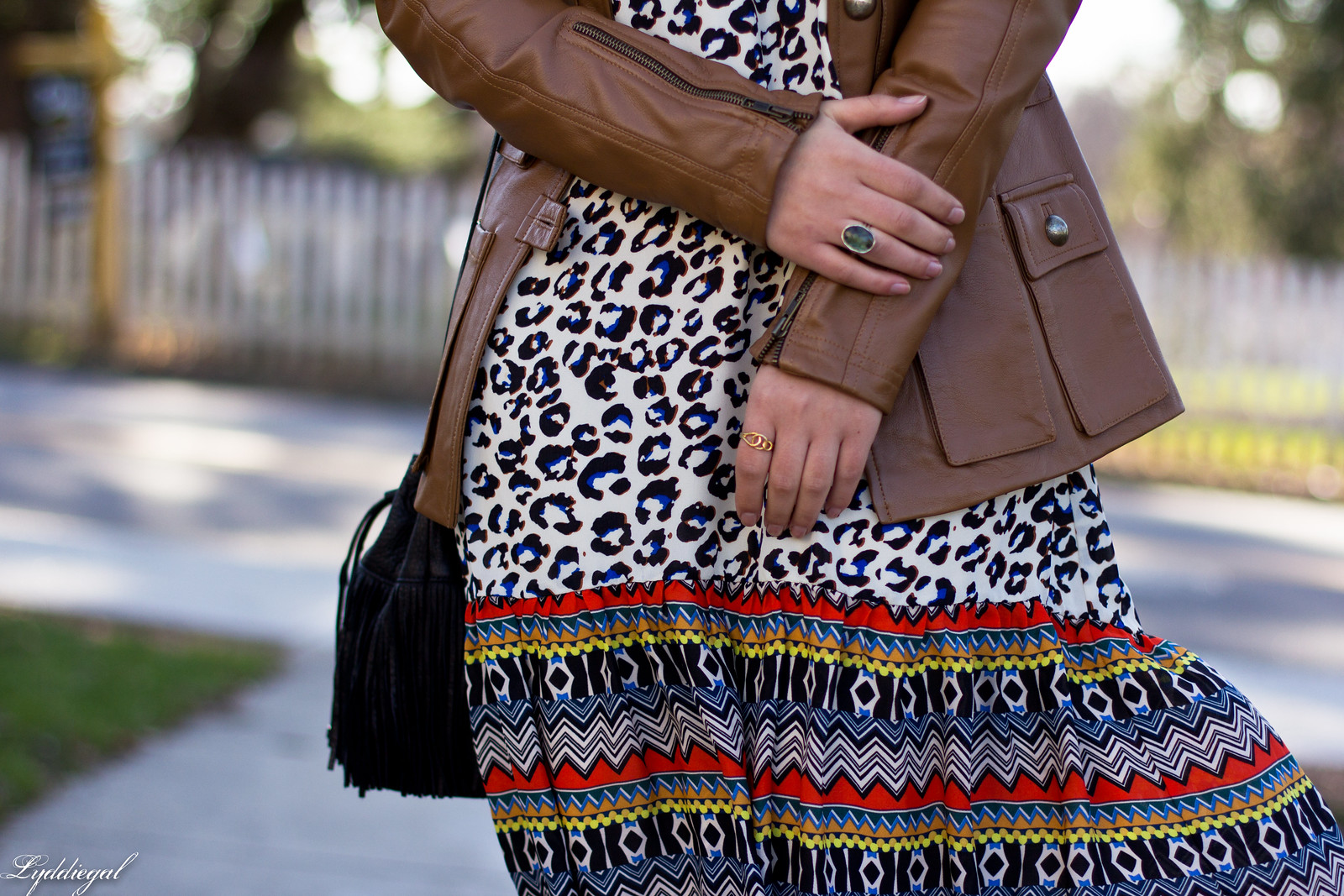 leopard print dress, leather jacket, fringe bag-9.jpg