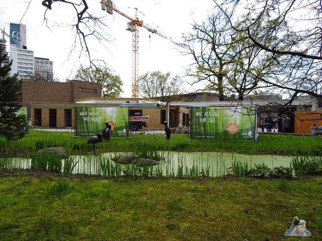 Zoo Berlin 29.04.2016   02