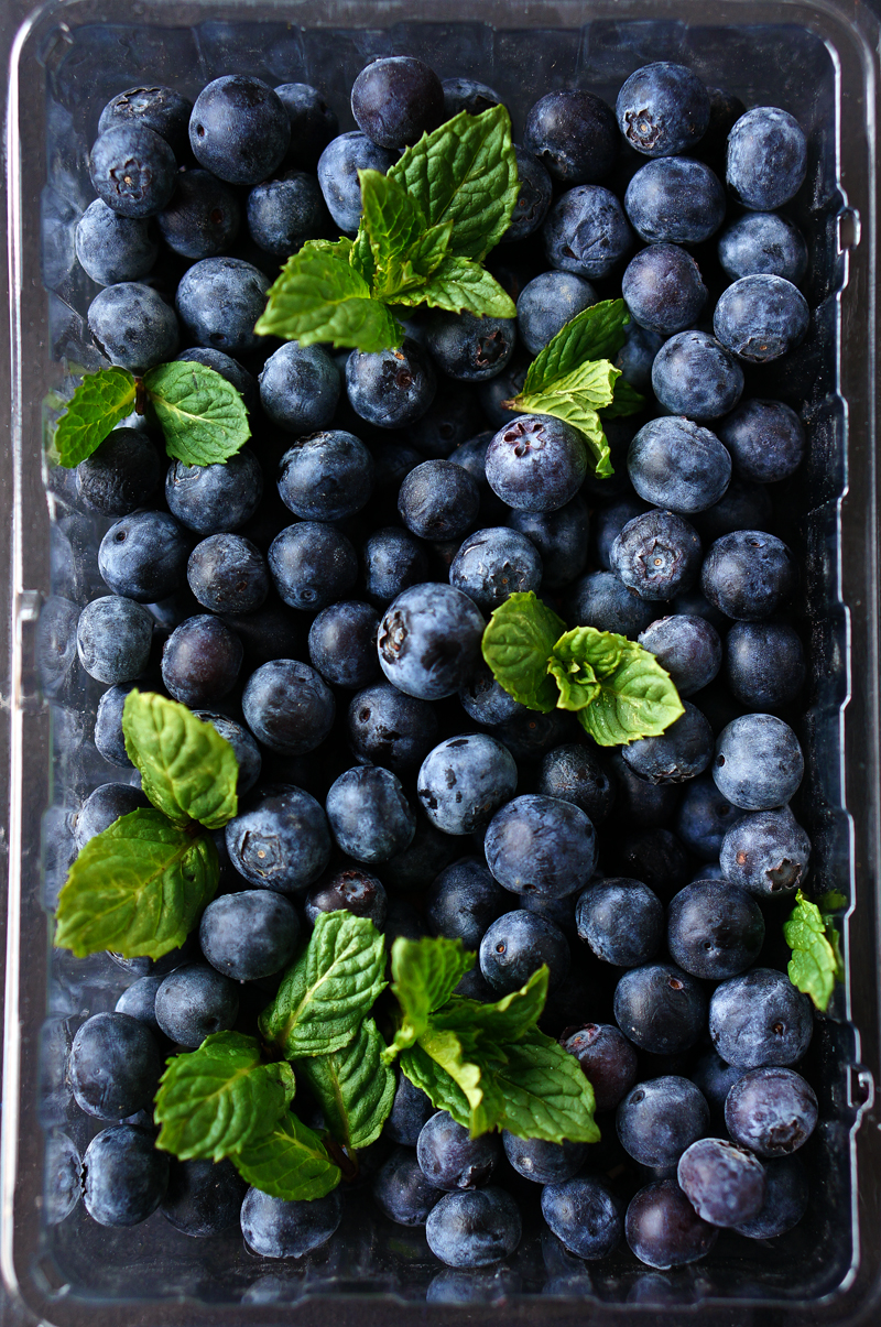 MintNBlueberries-800PX-SimiJois-2016_edited-2