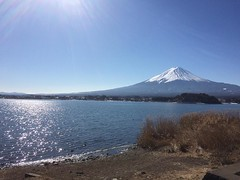 apparently 2.23 is fuji-san(mount fuji)day❤︎here's one of my faves from our recent trip to the area  #mtfuji #japan