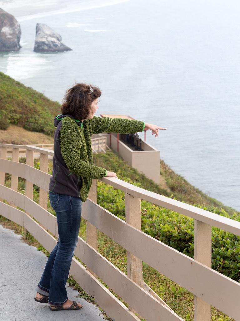 Eva entdeckt ein Grauwal