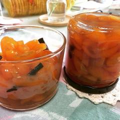 kinkan(kumquat) conserva @sunsetmag recipe inspired by @ironchefmom ❤︎thanks Michelle for the kinkan, will send you this bottle:)  #kinkan #kumquatconserva #sunsetmagazine #japan