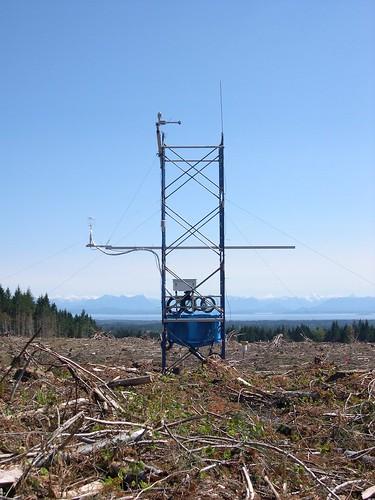 Carbon balance after clearcut harvest
