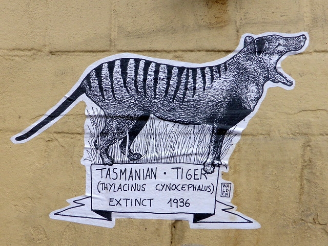 street art, depicting the extinct Thylacine, Shoreditch