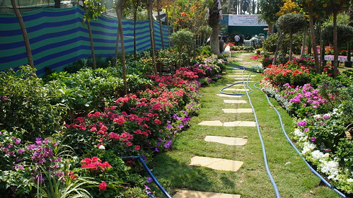 Flowerbeds aisle