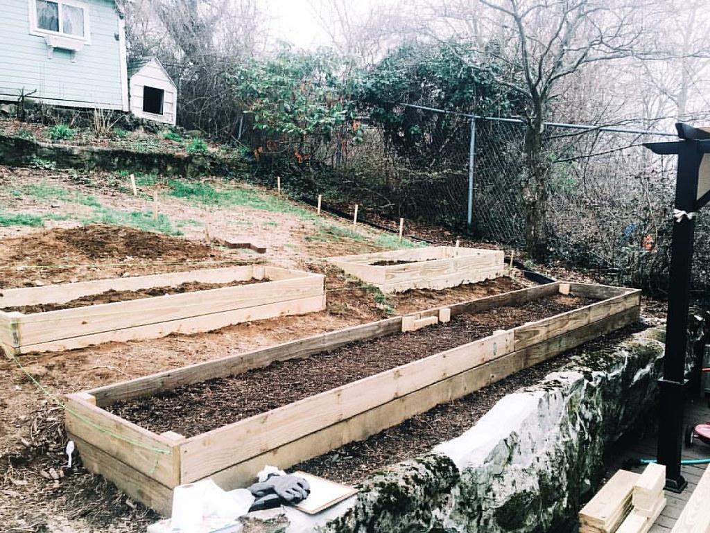 #garden #gardening