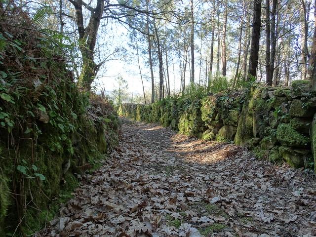 Corredoira en el monte San Lois