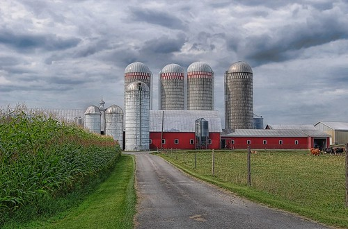 Silos | by Bob Jagendorf