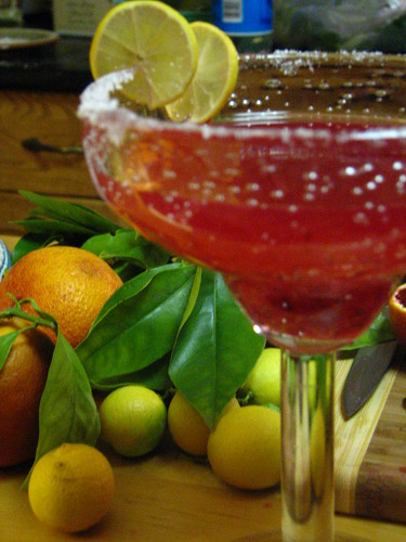 Blood Orange Margaritas | by SeppySills