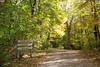 Auto Trail at Hayes Arboretum