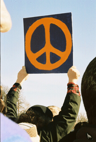 Peace Sign | by Ava Lowery