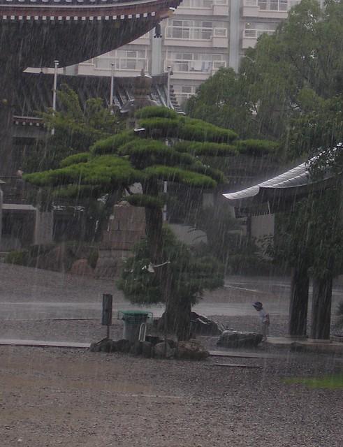 Girl in the rain...