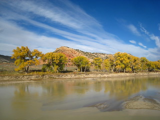 Yampa River | by cm195902