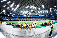 Felions at BC Place | by Lisa Bettany {Mostly Lisa}