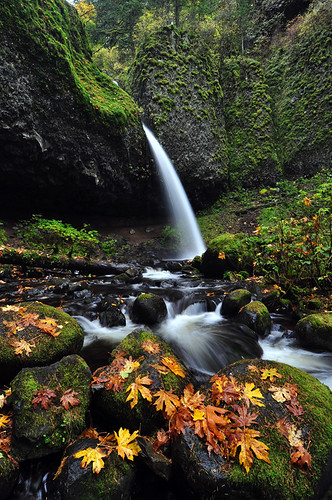 Ponytail Falls, Autumn Study 2009 | by LiefPhotos