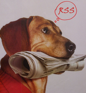 Newspaper dog thinking RSS | by stylianosm