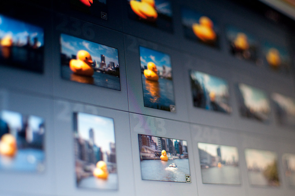 Is Lightroom Struggling? These Tips Should Fix That