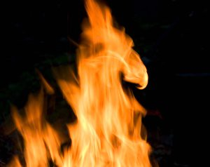 The fire rooster is coming our way (Credits: PhotoStylist1 / FlickR)