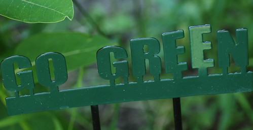 gogreen | by Aunt Owwee