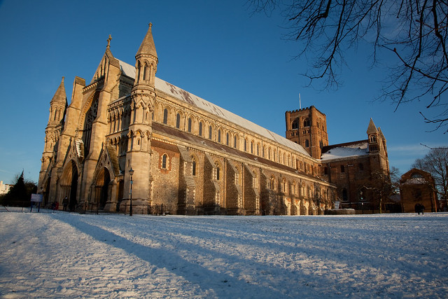 Abbey Snow