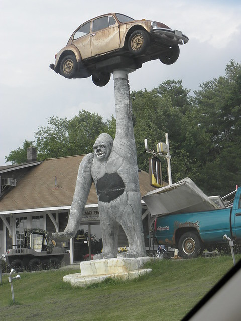 Gorilla Holding a VW on RT 7 in Vermont