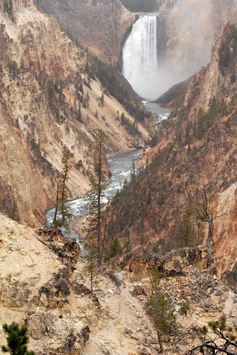 Lower-Yellowstone-Falls | by jeffloomis1