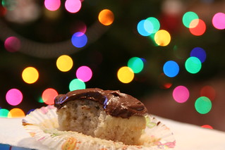 Cupcakes and Christmas Lights | by Jennifer Lynn Photos & Design