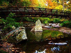 Sligo Creek Bridge i | by tanekaberi