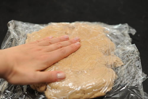 shaping the dough - easier wrapped in plastic | by sassyradish