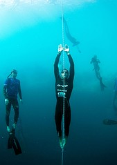 William Trubridge Freediving | by gary-king
